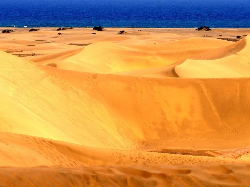 Spanien - Teneriffa & Gran Canaria entdecken