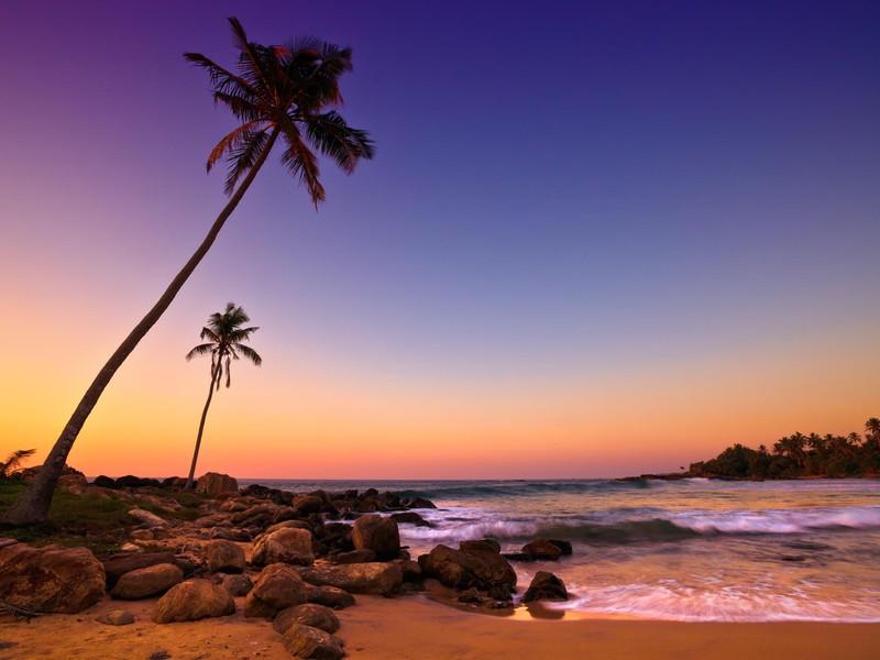 Kultur & Strand in Sri Lanka