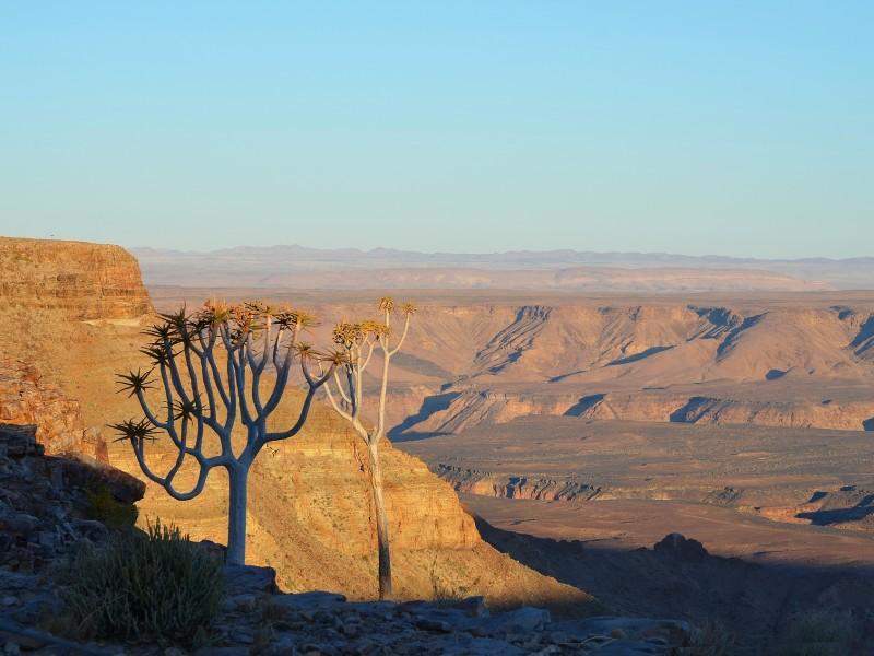 Naturspektakel Kalahari, Sossusvlei & Fish River Canyon