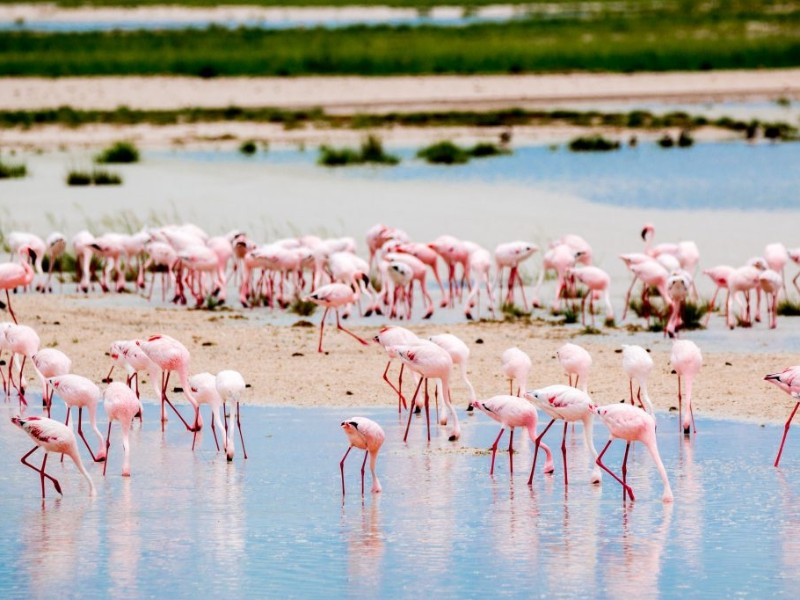 Namibias endlose Weiten - inkl. Flug