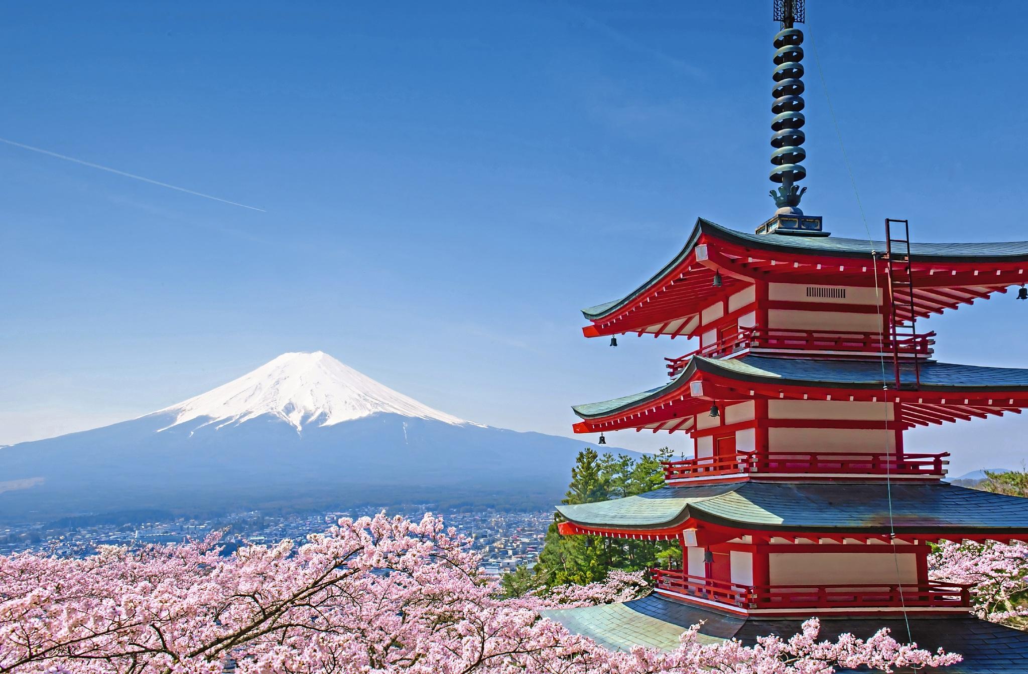 Vulkan Fuji in der Kirschblütenzeit