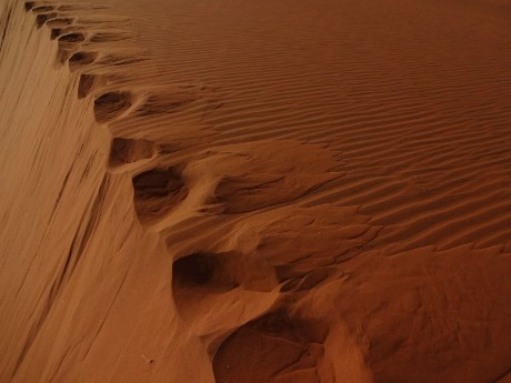 Spuren im Sand, Namibia