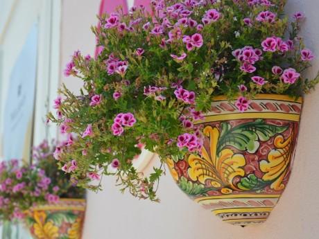 Italien-Sizilien-Blumen