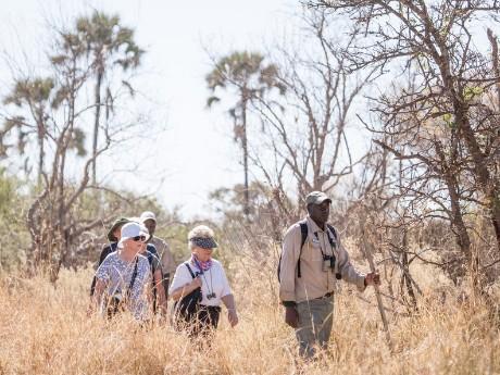 Bush Walk im Moremi