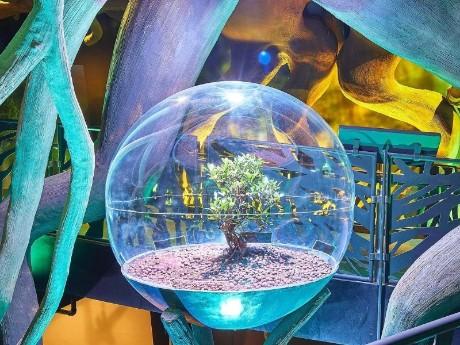 vae-dubai-expo2020-world of the forest