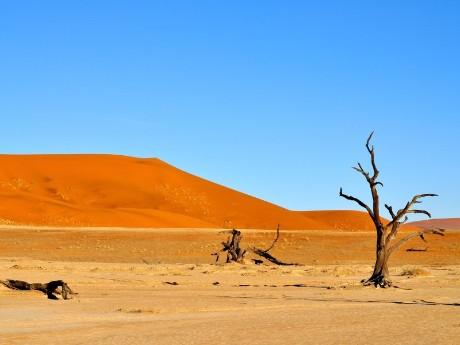 Wüstenlandschaft Namibia