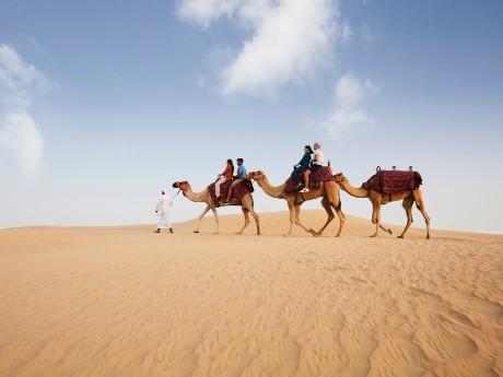 vae-dubai-camel ride