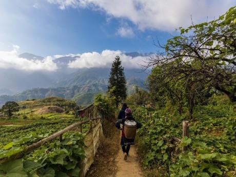 Wanderung in Sapa