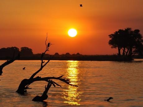 Chobe bei Sonnenuntergang