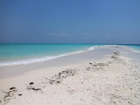 Strand, Sansibar