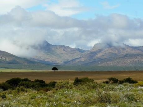 Kleine Karoo