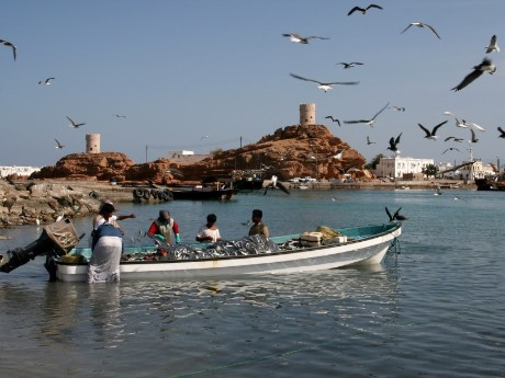 Fischer in Sur, Oman