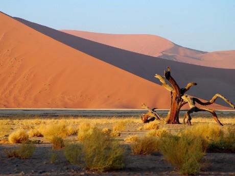 Mächtige Dünen Namibia