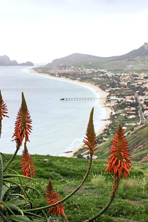 Verlängerung Madeira - inklusive Flug