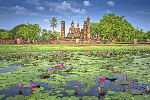 Lotus Teich in Sukhothai