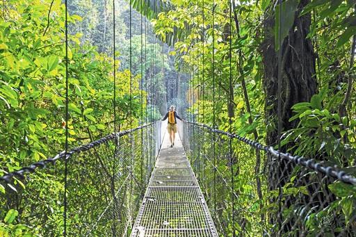 Individueller Aufenthalt in Monteverde