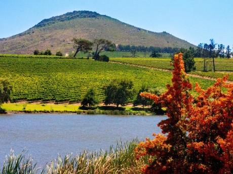 Winelands