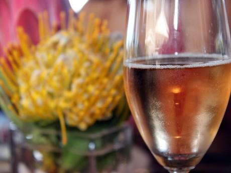 Weinverkostungen in den Winelands